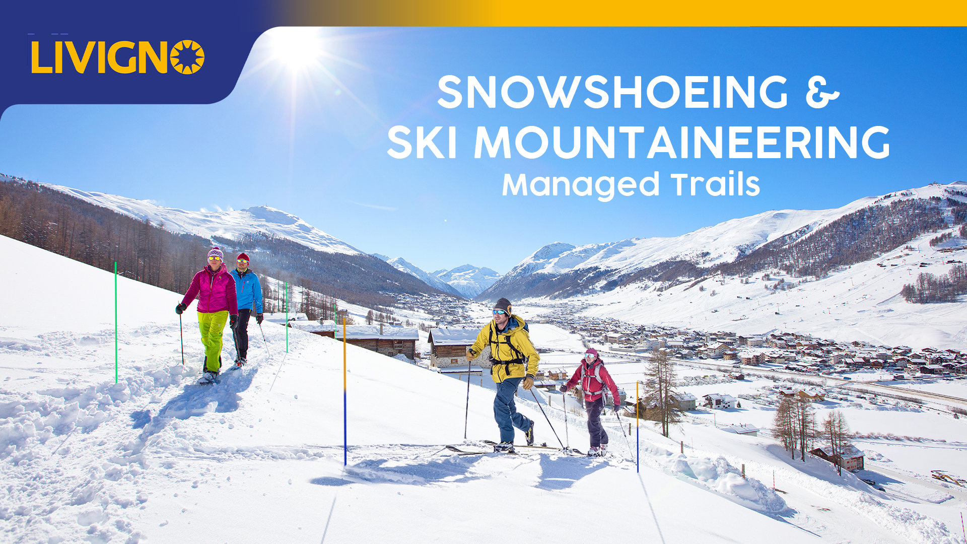 snowshoe, ski mountaineering
